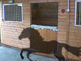 Horse-and-stable-door